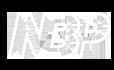 NBP_logo